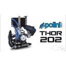 Motor POLINI THOR 250